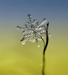 enhanced-snowflake