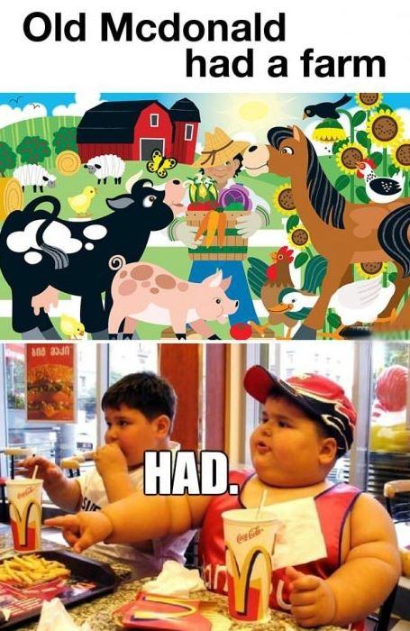 macdonald-farm